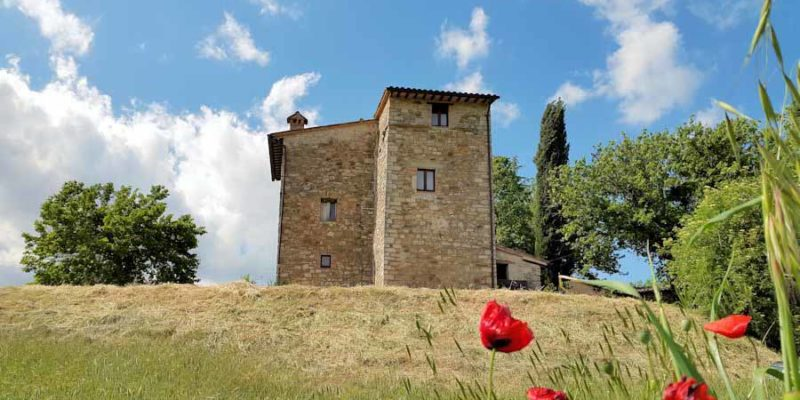 Ancient Tower House - Exterior