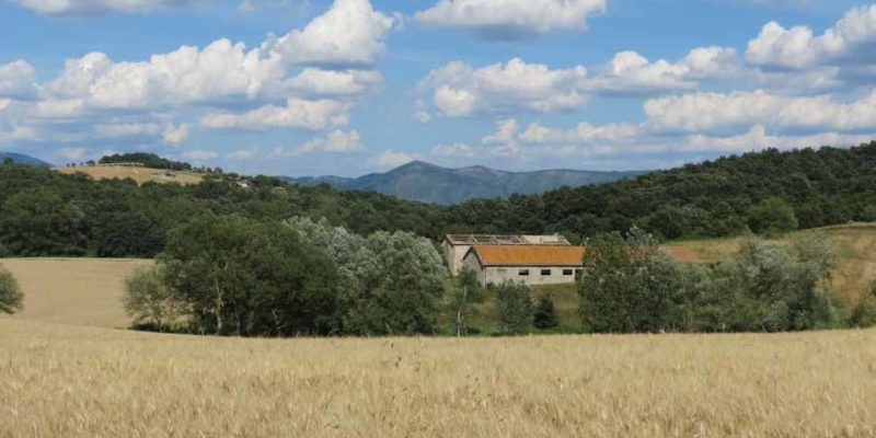 Country House and X Large Stable - Exterior